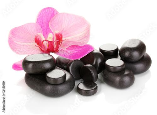 Fototapeten,orchidee,blume,isoliert,weiß