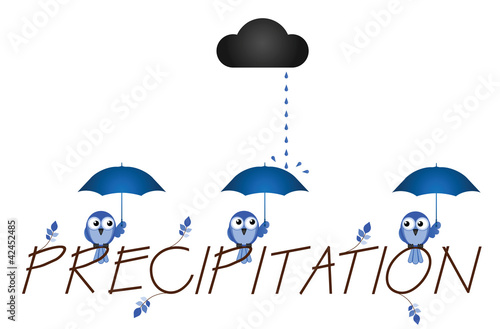 Precipitation twig text isolated on white background