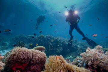 videographer underwater