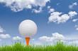 golf ball and tee on tall grass