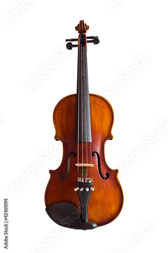 violin isolated with clipping path