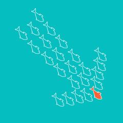 School of fish swimming in shape of down arrow