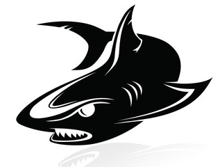 The vector image of a shark,logo,sign,vector,icon