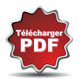 TELECHARGER PDF ICON