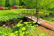 Old wooden bridge in a beautiful garden