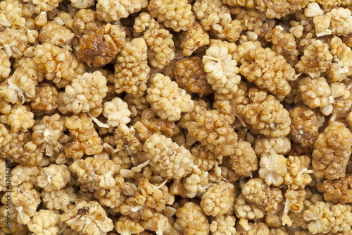 dried mullberry background
