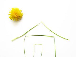 Grünes Haus 1