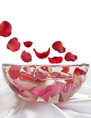 rose petals flying to bowl