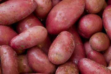 Red patatoes