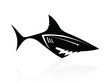 The vector image of a black shark, logo, sign, icon