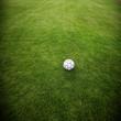 Fussball auf dem Fussballrasen