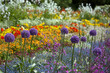 canvas print picture - bunte Blumen