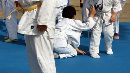 Judo exhibition