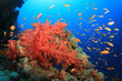 Red Soft Corals and Tropical Fish on an ocean reef