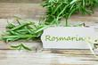 Rosmarin mit Schild