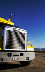 Freightliner grill