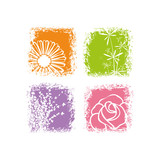 Fototapety Abstract colorful flower on white background