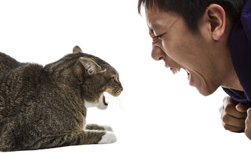 Man against Cat- Snarling Faces