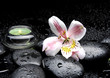 Zen-like scene with orchid and candles and stones in water