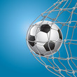 Soccer Goal. A soccer ball in a net. Vector illustration