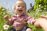 kleiner Mann in Blumenwiese