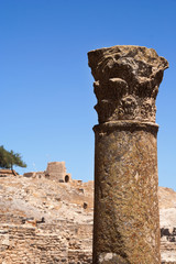 Column in Dougga