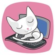 Cute Cat On Laptop