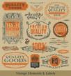Vector vintage emblems, elements and labels