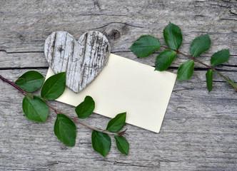 Hintergrund Holz Natur Papier