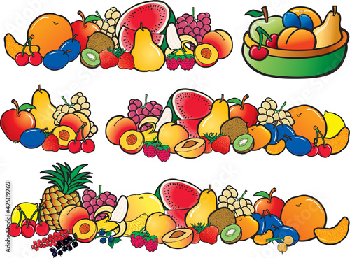 fresh color fruit collection vector