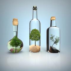 Bottiglie con Alberi