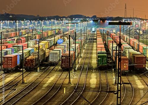 Güterbahnhof in Maschen - Hamburg - 42515622