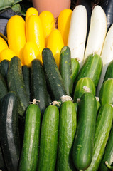 Cucumber and zucchini