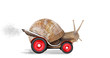 Speedy snail like car racer. Concept of speed and success - 42523837