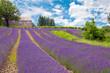 Provence - 42524654