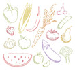 multicolored fruits and vegetables vector set