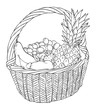 basket with different fruits vector