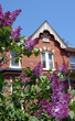 lilacs and Victorian gable