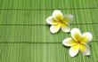 Fototapeten,2,hintergrund,bambus,schöner