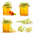 Collection of Honey in glass jar with flowers isolated on white
