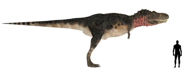 Tarbosaurus Size Comparison