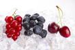 früchte auf eis
