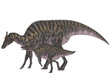 Adult and Young Saurolophus