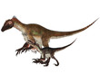 Adult and Young Utahraptor