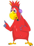 Funny Parrot. Comunication.