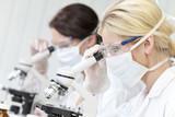 Female Scientific Research Team Using Microscopes in Laboratory