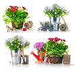 set garden flowers with tools isolated on white background