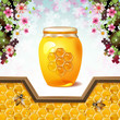 Glass jar with bees and honeycombs