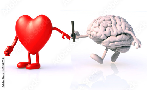 relay between brain and heart