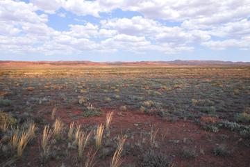 Die Wüste am Morgen